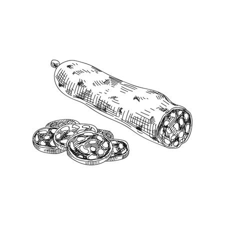 Ilustración de productos cárnicos dibujados a mano de vector hermoso. Imagen detallada de salami de estilo retro. Elemento de dibujo vintage para diseño de etiquetas, envases y tarjetas. Fondo moderno. Ilustración de vector