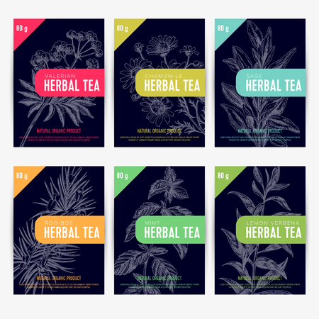 Beautiful vector hand herbal tea card set.