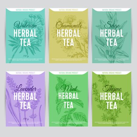 Beautiful vector hand herbal tea card set.