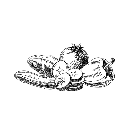Beautiful vector hand drawn vegetables Ilustrace