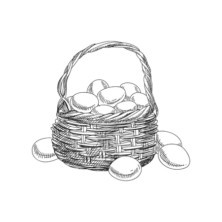 Beautiful vector hand drawn a basket with eggs Illustration. Detailed retro style image. Vintage sketch element for labels, packaging and cards design. Modern background.