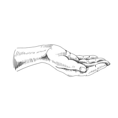 Vector hand drawn hand gestures  イラスト・ベクター素材