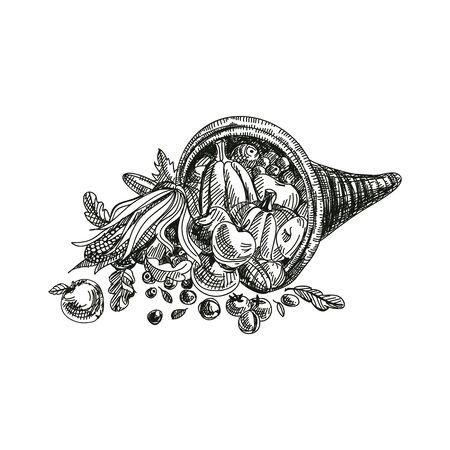 Cornucopia hand drawn vector illustration