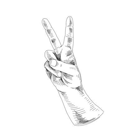 Vector hand drawn hand gestures Illustration. Detailed retro style image. Vintage sketch element for labels, packaging and cards design. Modern background.