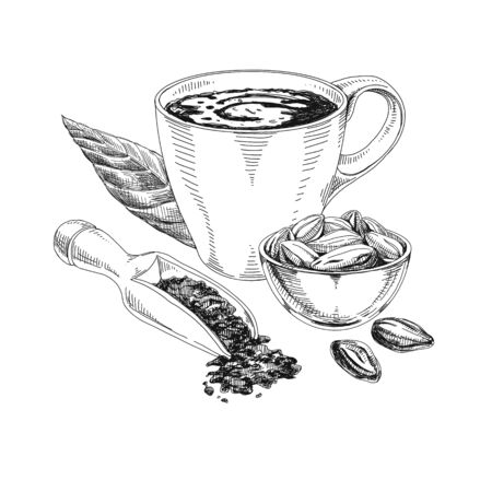 Cocoa products hand drawn vector sketch illustration 일러스트