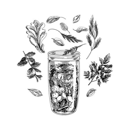Jar with ingredients for smoothie making on white  イラスト・ベクター素材