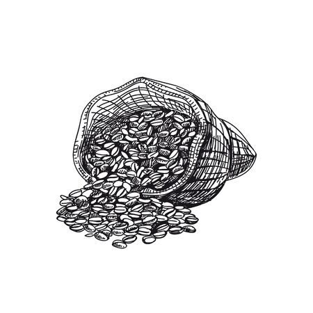 Coffee grains hand drawn black and white vector illustration. Retro sack sketch. Coffee beans packaging monochrome design element. Vintage arabica grains isolated on white background