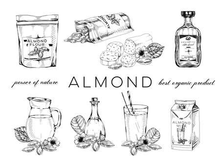 Collection of almond nut products Vector Illustration