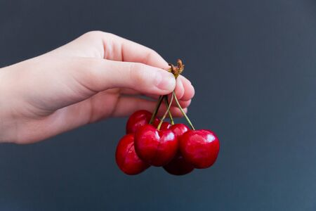 Juicy ripe cherries in hand on a dark background. Selective focus. 版權商用圖片
