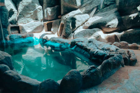 Empty enclosure for penguins with a reservoir and rocky terrain in the city zoo. Moscow, Russia, July 2020.