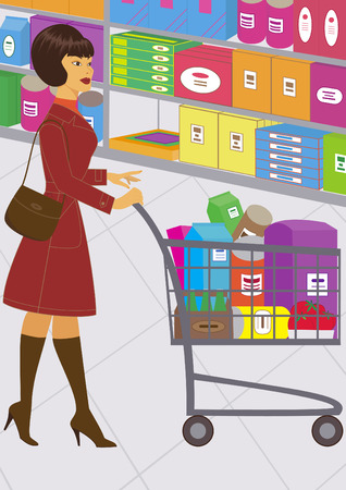 illustration of a pretty woman, who is shopping Illustration