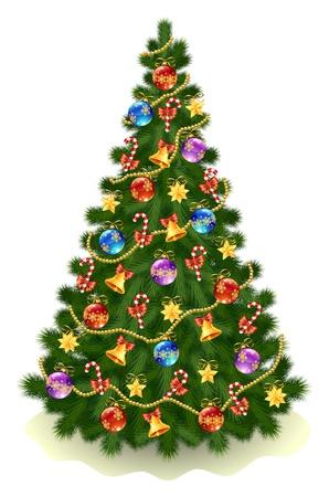 arbre     ? � feuillage persistant: Illustration de l'arbre ?hristmas sur fond blanc Illustration