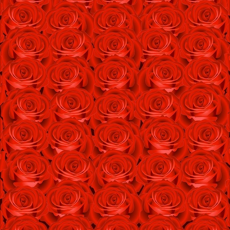 Background with red roses Illustration