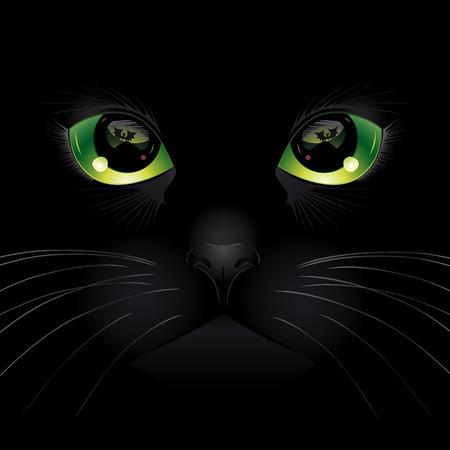 Achtergrond met zwarte kat. Vector illustratie.