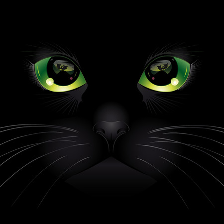 green eye: Background with black cat. Vector illustration.