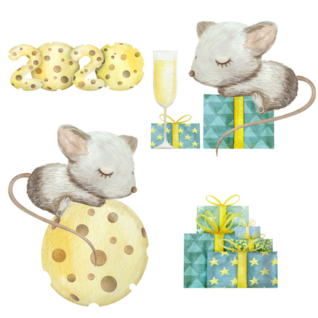 Cute hand drawn watercolor rat isolated on white background. Mouse symbol 2020 new year. Set with gift and cheese
