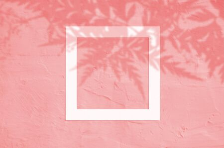 Flat lay top view of creative copyspace with paper white frame and tropical leaves palm shadow on coral color background. Stock Photo