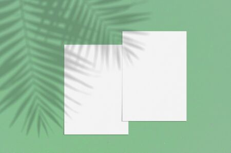 Blank white vertical paper sheet 5x7 inches on green background with shadow overlay. Modern and stylish greeting card or wedding invitation mock up