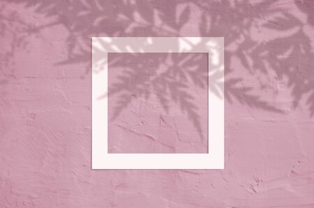 Flat lay top view of creative copyspace with paper white frame and tropical leaves palm shadow on coral color background. 스톡 콘텐츠 - 146378750