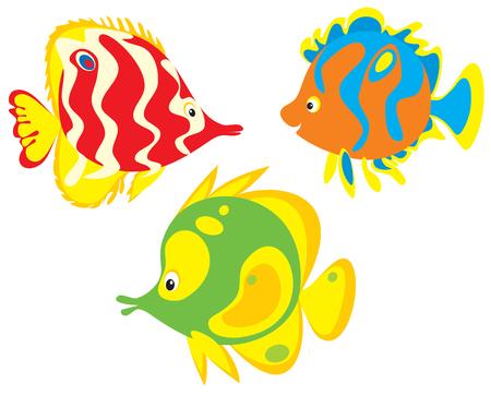 Fish Stock Vector - 3852286