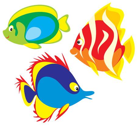 Fish Stock Vector - 3852285