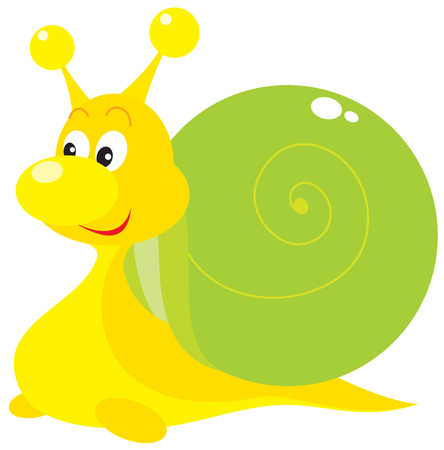 Snail Stock Vector - 6182043