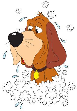 Washing Dog Illustration