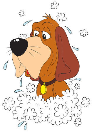 Washing Dog Stock Vector - 6290553