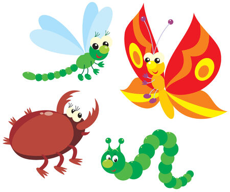 beetles: Caterpillar, butterfly, dragonfly and beetle Illustration