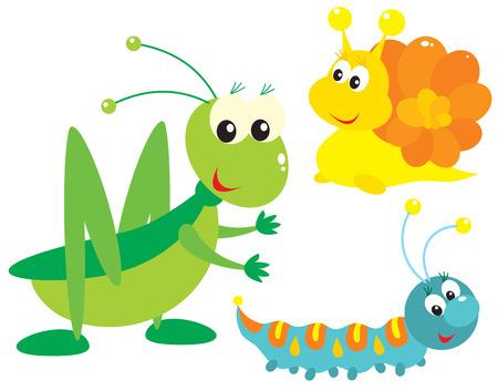 Grasshopper, snail and caterpillar