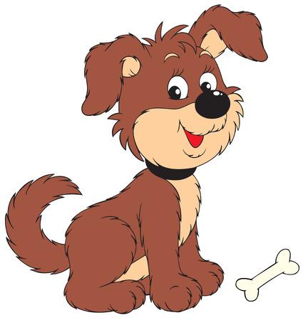 perros graciosos: Perro con hueso