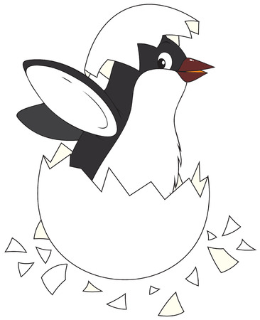 Hatching penguin Vector