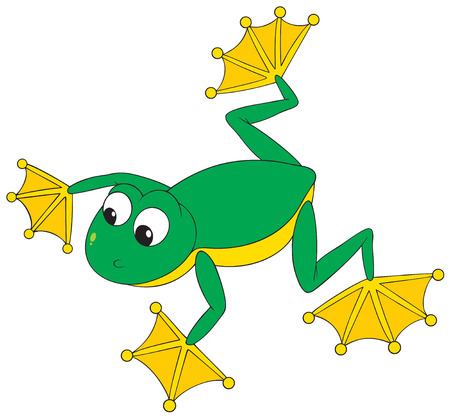 Flying frog Vector