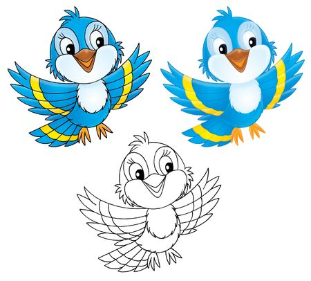 nestling birds: Blue bird (black-and-white and color illustrations) Stock Photo