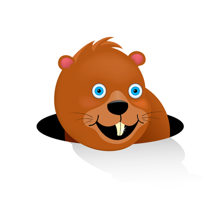 The happy groundhog looked out of the mink saw his shadow. Traditional holiday February 2 in the United States and Canada. The cartoon character of a mammal of the squirrel family. Vector illustration.