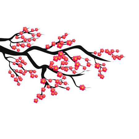 Sakura branch. Vector color illustration on isolated background. Object.