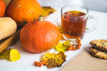 Hello, Autumn. Orange pumpkins Notepad Cup of tea Autumn foliage on a white background Close up