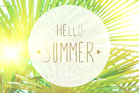 phrase Hello summer on the background of green foliage and sunlight Selective focus Reklamní fotografie