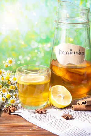 Healthy tea kombucha with lemon and cinnamon. Recipe for homemade Kombucha Summer bright background