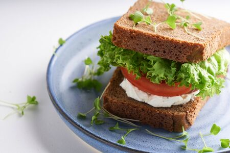 healthy sandwich with gluten-free bread, tomato, lettuce and germinated microgreens served in plate on white background