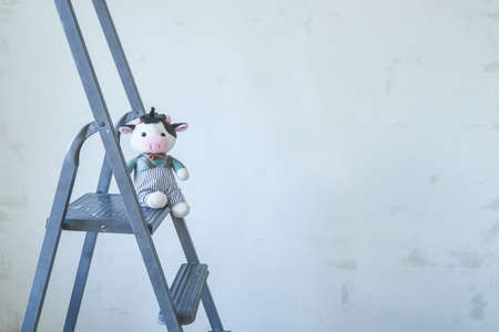 cow- symbol of the new year 2021. Soft toy lies on a stepladder Stock Photo