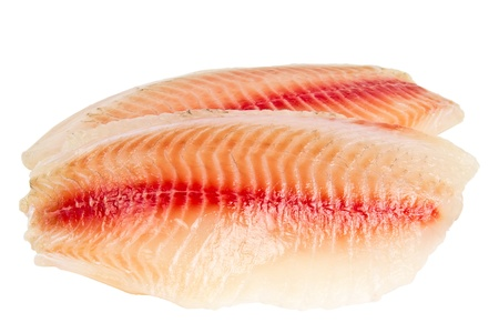 tilapia fillet of raw fish isolated on white background photo