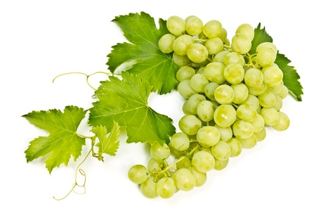 bunch of green grapes isolated on white background Stock Photo - 14647314