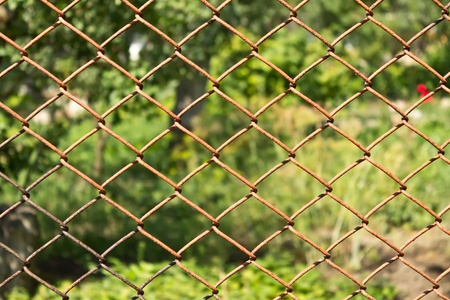 rabitz: rusty mesh RABITZ protects garden Stock Photo