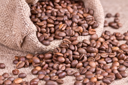 Roasted coffee beans spilled out of the jute bag Stock Photo - 17227101