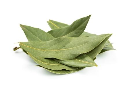 Aromatic bay leaf isolated on white background