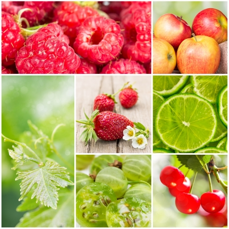 collage of summer fruits in the sunlight photo