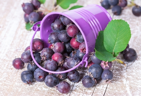 Wild berries spill out of the bucket