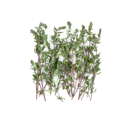 sprigs: Dried thyme sprigs isolated on white background Stock Photo