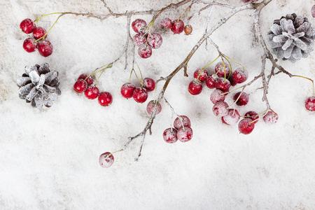 copo de nieve: Ramificaci�n de la Navidad con las bayas en la nieve de fondo Foto de archivo